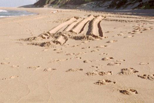 le sable de la plage