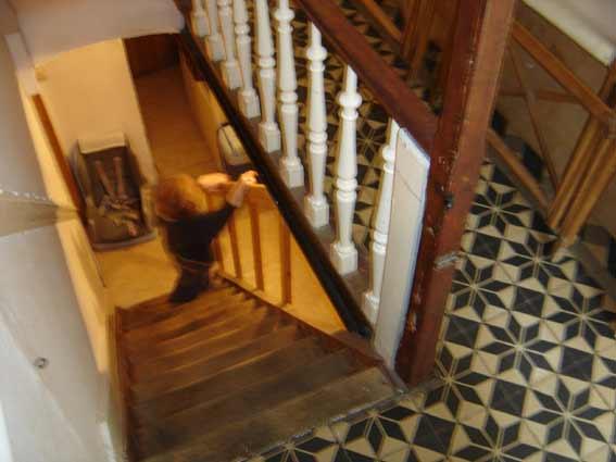 les escaliers de la cave