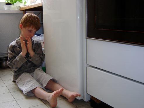 le petit prince et le frigo