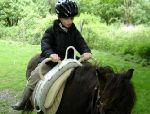 le petit prince à cheval